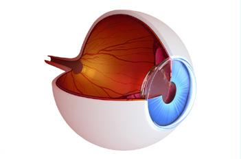 Glaucoma-img